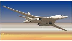 Stock Illustration of strategic bomber