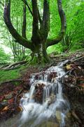 stream with cascade in spring - stock photo
