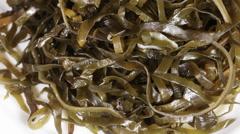 Kelp Salad Stock Footage