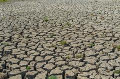 Drought parched soil Stock Photos