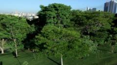 Brazil Curitiba Jardim Botânico Park, Aerial clip  Stock Footage