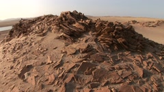 Desert in Peru (Paracas National park) Stock Footage