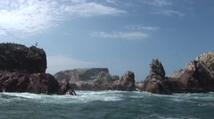 Islas Ballestas in Peru Stock Footage
