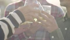 Closeup Of Friends Toasting With Alcohol, At Sunset - stock footage
