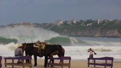 Mexican paradise, big wave surf with horse in background SLOW MOTION Stock Footage