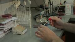 Lab technician performing bacterial analysis, bacteriology, hands close up. Stock Footage