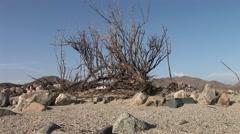 Desert in Peru near Nazca Stock Footage