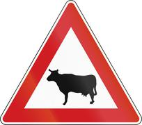 Cattle Crossing in The Czech Republic Stock Illustration