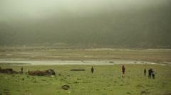 Fogy Himalayan prairie, long shot, pan left, Shallow DOF - stock footage