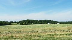 3603 Hay Field Cut Ready For Harvest Baling, 4K Stock Footage
