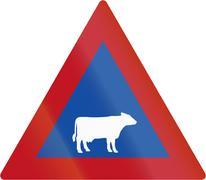Cattle Crossing in Botswana - Old Design - stock illustration