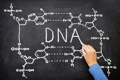 DNA blackboard drawing - stock photo