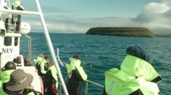 Whale Watching near HUSAVIK, ICELAND - CIRCA AUGUST, 2014 Stock Footage