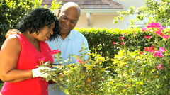 lifestyle recreation mature retired male female ethnic couple outdoors garden - stock footage