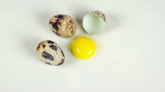 Quail eggs on the white background close up rotation 4K Stock Footage
