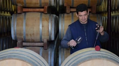 Winemaker Making Wine Test in Winery Cellar - stock footage