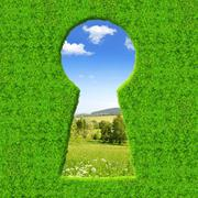 Green keyhole Stock Photos