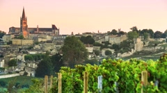 Saint-Emilion-Vineyard landscape-Vineyard south west of France Stock Footage