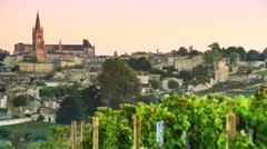 Saint-Emilion-Vineyard landscape-Vineyard south west of France Stock Footage