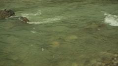 River flowing in Himalaya mountains, medium shot, pan right Stock Footage