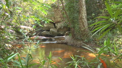 Kbal Spean River at Angkor, Siem Reap, Cambodia Stock Footage