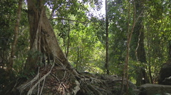 Kbal Spean River at Angkor, Siem Reap, Cambodia Stock Footage
