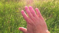 Sunbeams through Hand shining rays Stock Footage