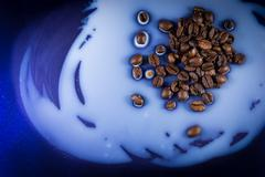 Coffee Beans Spilt on Milk - stock photo