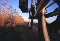 Close-up of bicycle wheels in motion, biking along the Big Pond Trail in - stock photo