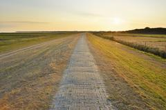 Dyke Path and fields at Sunset in Summer, Norderney, East Frisia Island, North - stock photo