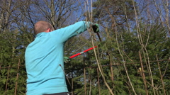 Gardener man trimming fir tree hedge with red shears. 4K Stock Footage