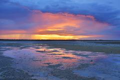 Stock Photo of Marshland at Sunset, Digue a la Mer, Camargue, Bouches-du-Rhone,