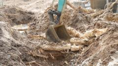 Backhoe root Stock Footage