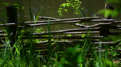 Wicker fence on the shore - stock footage