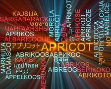 Stock Illustration of Apricot multilanguage wordcloud background concept glowing
