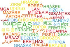 Peas multilanguage wordcloud background concept - stock illustration