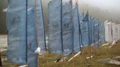Blue White buddhist prayer flags blowing in the wind, medium shot Stock Footage