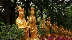 Many golden Buddhas sculpture, walking down on stairs in monastery Stock Footage