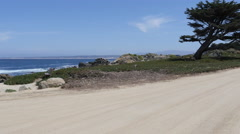 Shoreline with Tree at Pacific Grove Point Pinos Stock Footage