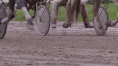 Many race horses hooves running across the race track, slow motion Arkistovideo