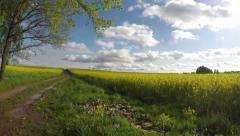 Summer rapeseed field road and clouds. Panoramic timelapse 4K Stock Footage