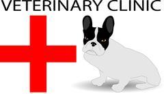 Veterinary clinic Stock Illustration