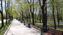Spring park with several benches next to a pond on a sunny day Stock Footage