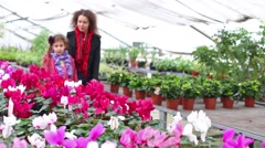 Mother and daughter walk among flowers at the greenhouse Stock Footage