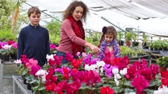 Family of three walk in greenhouse and count flowers Stock Footage