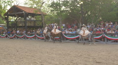 Five Mexican women riding horses at a gathering in Cancun Stock Footage