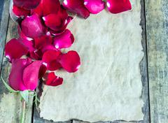 Fresh red rose and old paper on wooden background. Stock Photos
