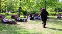 Stock Video Footage of Actor dressed in bear suit comes to lawn in park and lies down