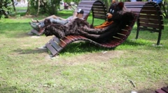 Actor dressed in bear suit sits on chaise-longue at lawn with people Stock Footage