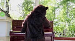 Actor dressed as bear plays piano outdoor in park, rear view. Stock Footage